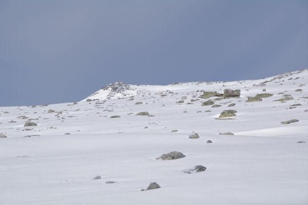 Le Puig de Campcardos