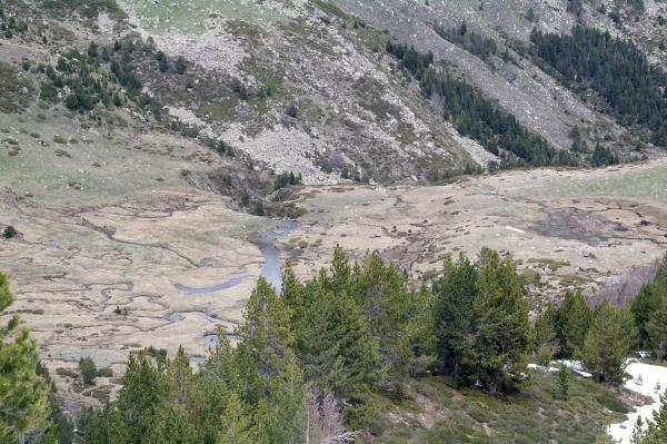 La Ribera de Campcardos