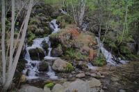 Le ruisseau du Rec de Malforat