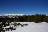 Le massif du Carlit depuis le Coll de Juvell