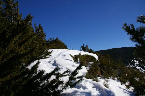 Le sommet du Puig d_Estaques est en vue!
