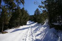 Le chemin remontant vers la Font Llagostera