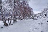 Le chemin descendant dans la vallee du Riu d'Eina