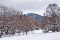 Le Bosc d'Eina