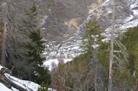 Valcebollere depuis le vallon du torrent de la Peguera