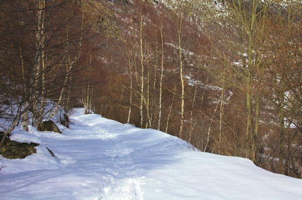 Le chemin enneigé remontant à La Socarrada