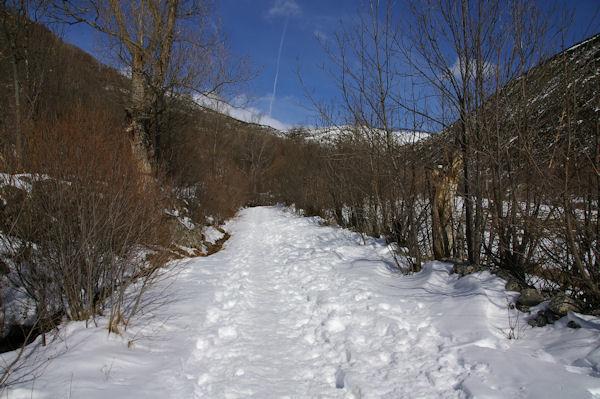 Le chemin enneigé aux Feixes Llargues