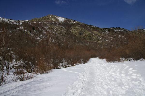 Le chemin enneigé montant à la chapelle, au dessus, la Serra de la Tira Dreta