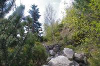 Les sentier pierreux a Serrat dels Camps
