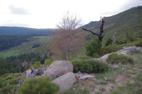 Le Rec dels Mianas depuis le Pla de Llauro
