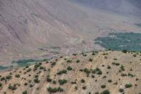 Agouti dans la vallee des Ait Bouguemez