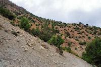Le sentier sur le djebel Tafenfent