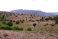 Un petit plateau menant a l'Assif Tafenfent