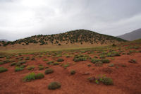 Un petit plateau menant à l_Assif Tafenfent