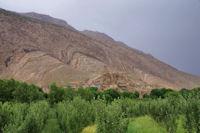 Agouti depuis la vallee des Ait Bouguemez
