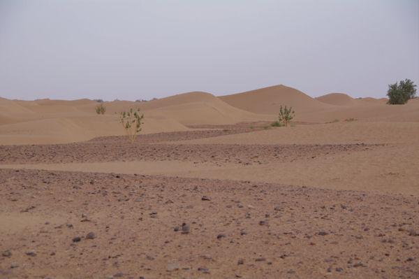 Dans l_Oued en Naam