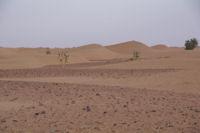 Dans l'Oued en Naam