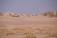 Les dunes au Nord entre Mhamid et Oulad Driss