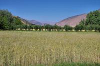 La riche vallée des Aït Bouguemez