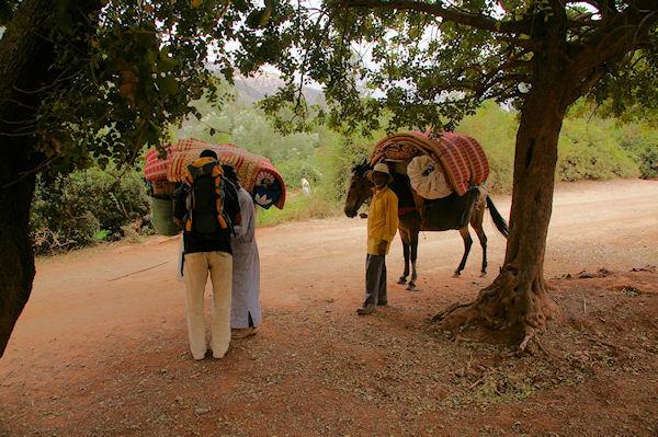 Saïd, le guide, Mohamed et Mohamed, les muletiers, enfin prêts pour le grand départ, peu avant Tassa Wirgane