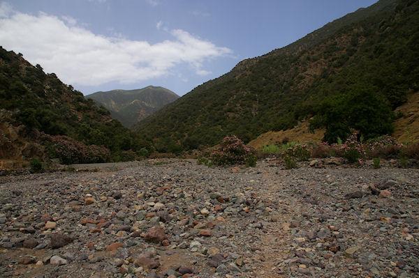 Le chemin remonte un moment le lit presque sec de la rivière au milieu des lauriers roses