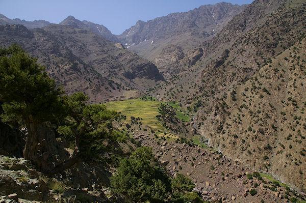 Azib Tamsoult verdoyant