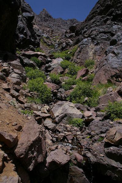 Un petit coin de verdure en descendant vers le refuge du Toubkal