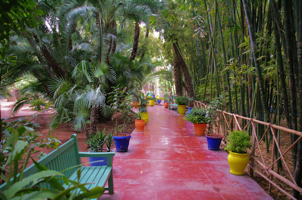 La jungle à Majorelle