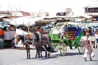 Une calèche sur la place Jamaa el Fna