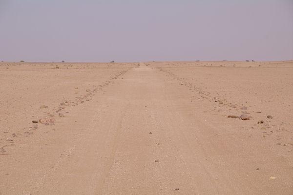 Une route dans l_immensité