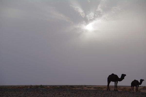 Lever de soleil sur l_Oued el Atach