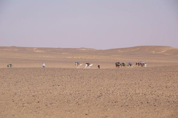 La caravane part vers Bogarn