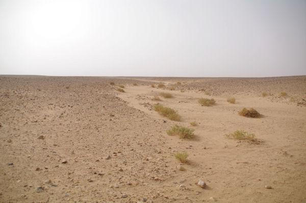 L_Oued el Atach, plat