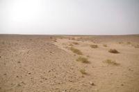L'Oued el Atach, plat