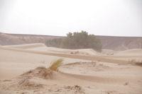 L'Oued el Atach