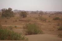 Une ancienne habitation au bord du Draa