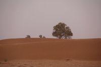 Les dunes a Rass Nkhal