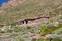 Maison berbere