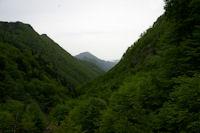 La vallee boisee de la riviere d'Ars, au fond, le Picou