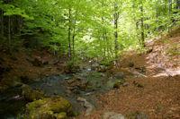 Le gue sur le ruisseau descendant de l'etang de Guzet