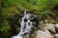 Le ruisseau de Lau