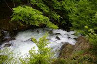 La riviere d'Ars, tumultueuse