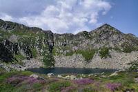 L'Etang d'Alate domine par le Mont Garias