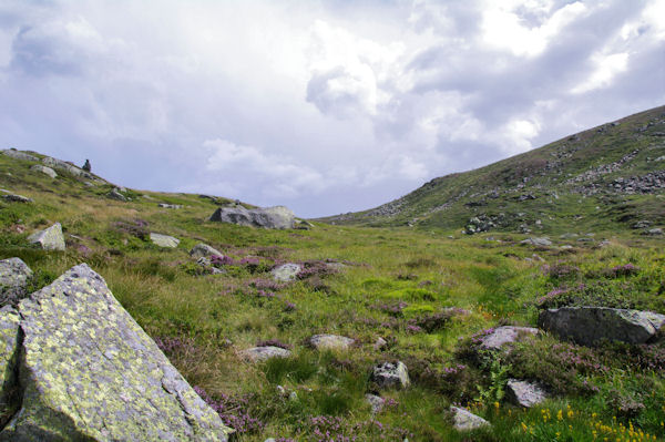 La partie supérieure du vallon de la Coume
