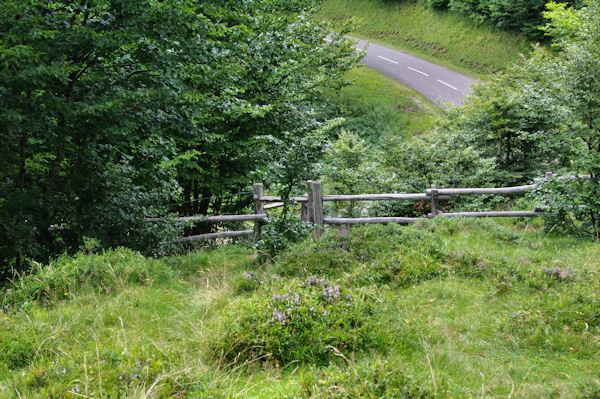 Passe à montons avant la route du col d_Agnès