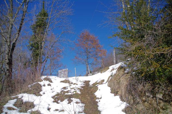 Le sentier au Col del Bouich
