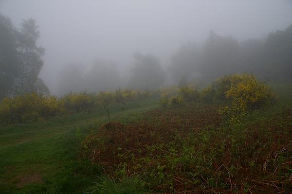 Des jeunets dans le brouillard au Col de la Serre