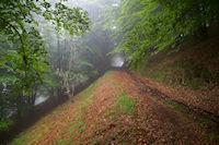 Le chemin bouillardeux sous le Cap des Trois Termes