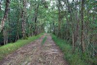 Le chemin à Hajaou