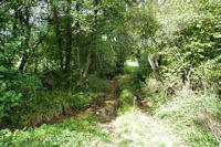 Le ruisseau de Mouquetrougue
